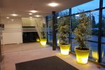 Schoonmaakbedrijf Hofs | Arnhem | Nijmegen | Ede | Vloeronderhoud en schoonmaak kantoren en entree bedrijfspand